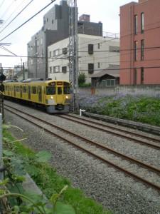 quartier_fleuri_train