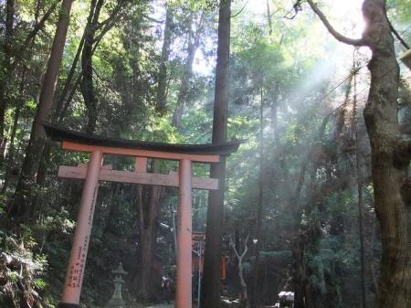Torii_2009_kyoto_by_siro
