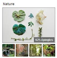 pinterest_sironimo_nature