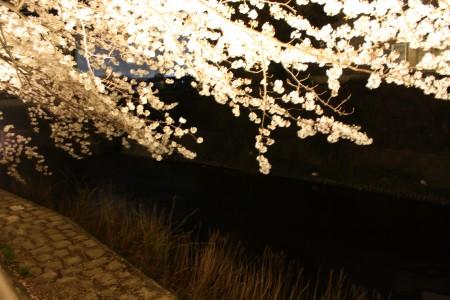 Japan_2014_Ito_Peninsule_Izu_03