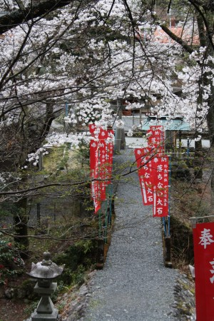 Japan_2014_La_vallee_oigawa_27