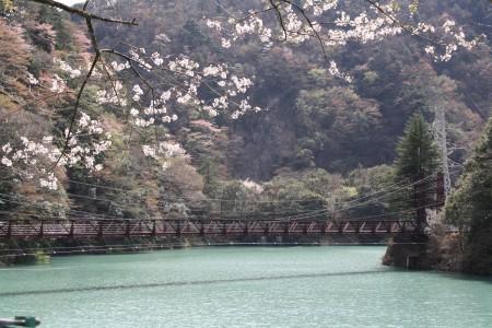 Japan_2014_La_vallee_oigawa_06