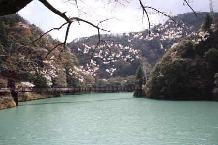 Japan_2014_La_vallee_oigawa_07