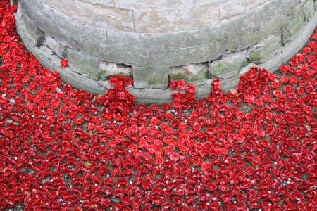londres_nov_2014_poppies_tower_london_04