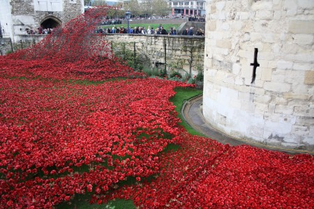 londres_nov_2014_poppies_tower_london_06