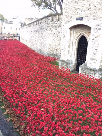 londres_nov_2014_poppies_tower_london_07