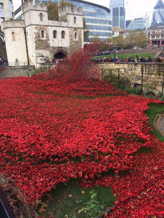 londres_nov_2014_poppies_tower_london_09