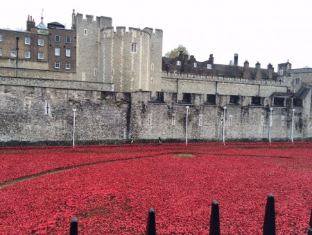 londres_nov_2014_poppies_tower_london_10