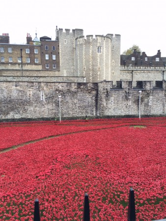 londres_nov_2014_poppies_tower_london_11