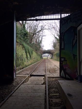 rail_petite_ceinture_paris_2016 (2)