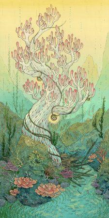 aquaticcosmos