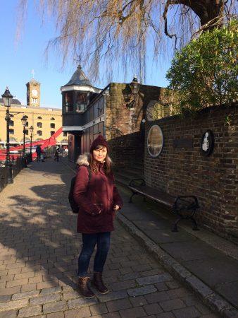 Londres_fev_2017_st_Katerine_docks (2)