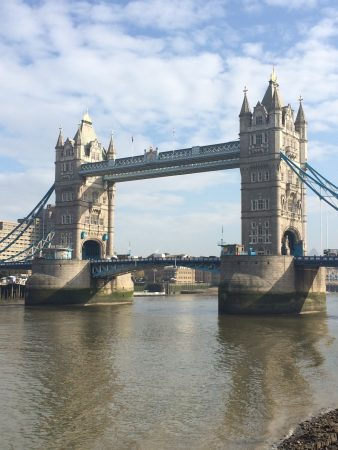 Londres_fev_2017_tower_bridge (3)