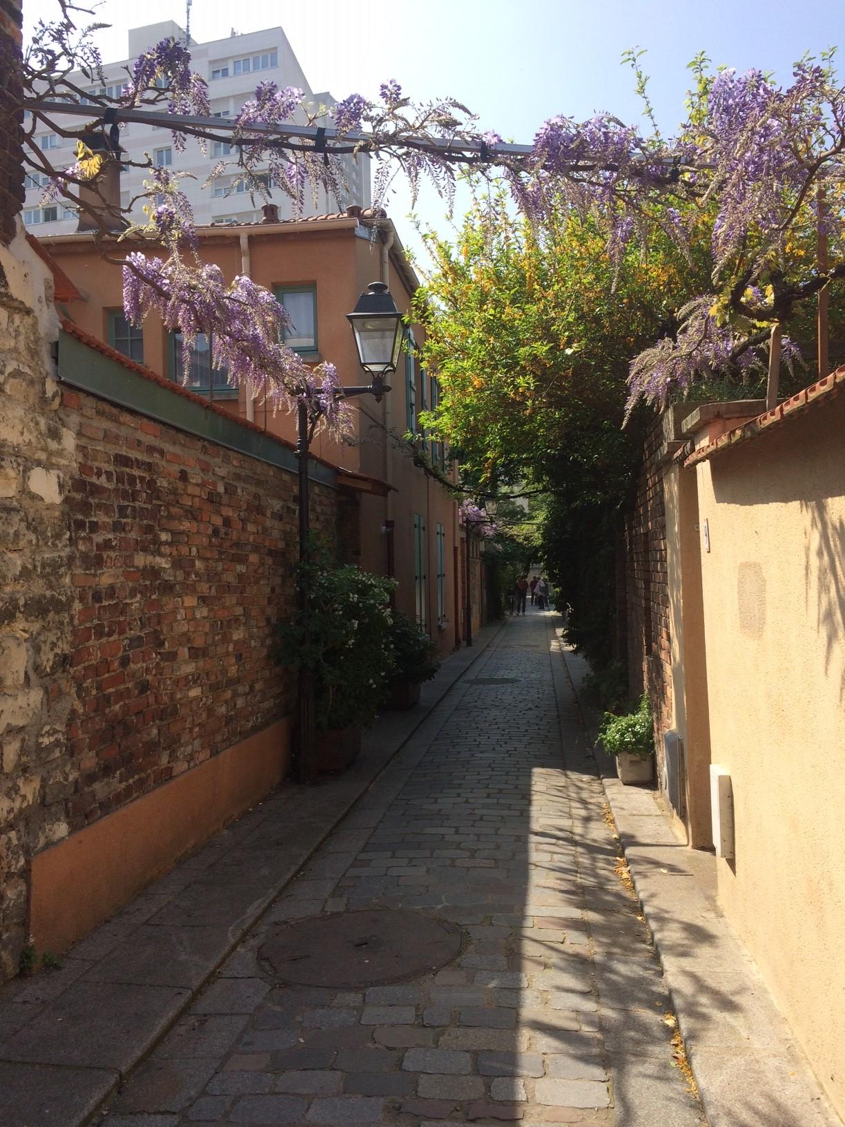 blog_sironimo_promenade_wisteria_avril_2017